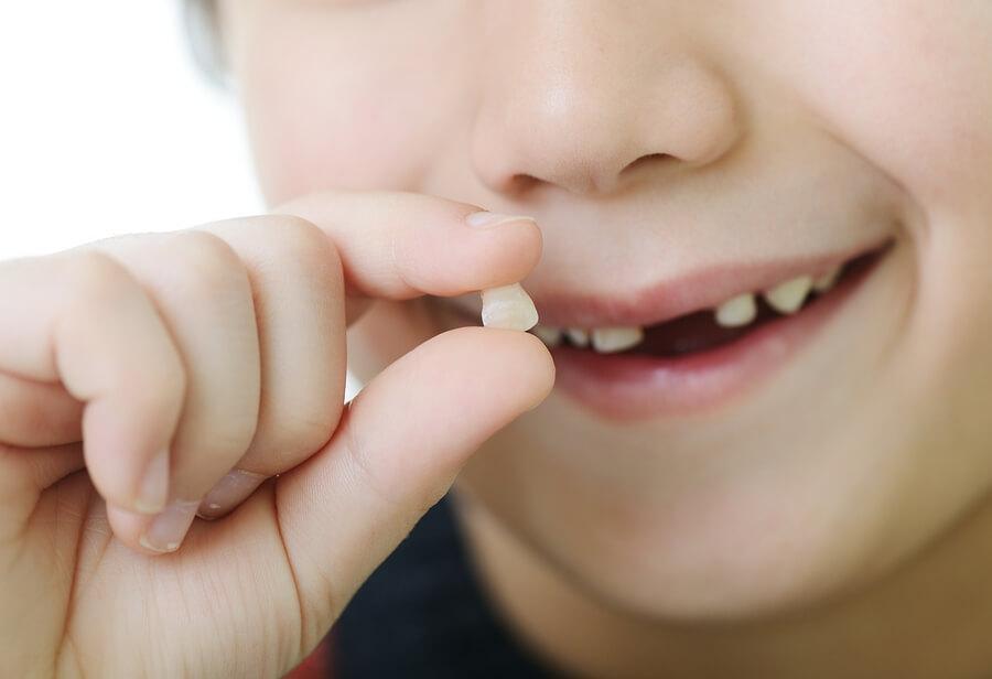 Süt Dişleri Ne Kadar Süre Ağızda Tutulabilir?